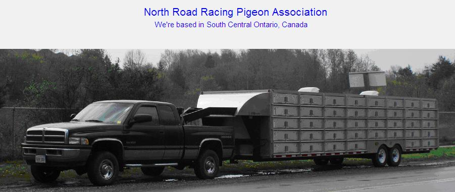 North Road Racing Pigeon Association Logo